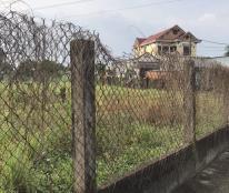 Chính chủ cần bán gấp lô đất trồng cây lâu năm tại đường Hoàng Phan Thái, quận Bình Chánh