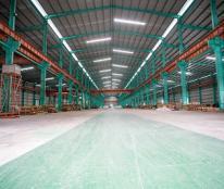 Cho thuê nhà xưởng sản xuất và kho tại cảng quốc tế Cẩm Nguyên,Long An