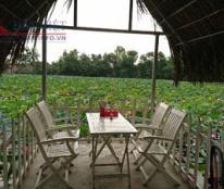 Sang nhượng quán ăn khu vực Tam Kỳ, Quảng Nam, view hồ sen duy nhất, giá 250tr