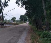 Chính chủ cần bán 2 lô đất tại Đường Ngô Đức Tốn, đường chính vào Dinh Thầy thím,TX Lagi, Tỉnh Bình Thuận.