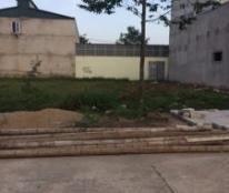 Chính chủ cần bán đất tại Xã Đại Lộc, Huyện Hậu Lộc, Tỉnh Thanh Hóa