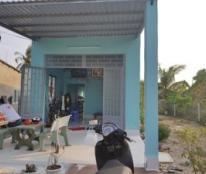 Chính chủ cần bán nhà đất tại ấp Nhựt Hòa, xã Nhựt Ninh, huyện Tân Trụ, tỉnh Long An
