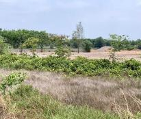 Chính chủ cho thuê đất nông nghệp, gần khu nông nghiệp công nghệ cao, LH 0918181089