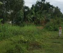 Bán mảnh đất mặt tiền ĐT 819 thị xã Kiến Tường Long An