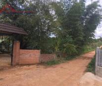 cần cho thuê 3000m2 đất tại số nhà 345 đường lý thường kiệt