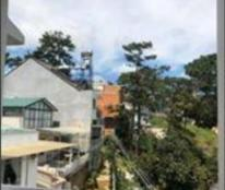 Chính chủ cần bán nhà hoặc đất hoàng hoa thám phương 10 Thành Phố Đà Lạt, Lâm Đồng