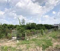 Bán lô đất nông nghiệp tại Cầu 3000, QL61C, xã Tân Hòa, huyện Châu Thành A, tỉnh Hậu Giang