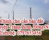 Chính chủ cần bán đất huyện Trảng Bom, Đồng Nai.