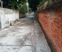 Chính chủ bán 4 lô đất tại Mai Trung, xã Tân Trường, Hải Dương, liên hệ 0968.020.821