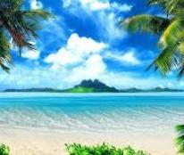 CHÍNH CHỦ CẦN BÁN GẤP LÔ ĐẤT BIỆT THỰ BIỂN THIÊN CẦM-HUYỆN CẨM XUYÊN-HÀ TĨNH