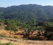 Cho thuê đất tại  Pù Luông , Thanh Hóa làm Resort/ Homestay