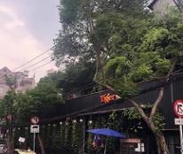 CHÍNH CHỦ CẦN CHO THUÊ NHÀ 2 MẶT TIỀN TẠI 63 Phạm Văn Hai & Bùi Thị Xuân, phường 1, quận Tân Bình- TP Hồ Chí Minh