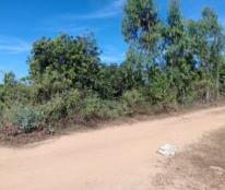 Chính chủ cần bán gấp mảnh vườn xã La Ngà- huyện Định Quán- tỉnh Đồng Nai.