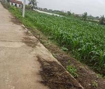 BÁN ĐẤT TẶNG NHÀ - Huyện Giao Thủy, Tỉnh Nam Định