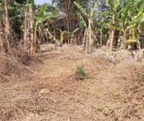 CHÍNH CHỦ cần bán đất tại: Đường Nguyễn Chí Thanh,xã Long Thành Nam,huyện Hoà Thành,Tây Ninh