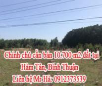 Chính chủ cần bán đất tại Hàm Tân, Bình Thuận