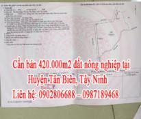 Cần bán đất nông nghiệp ở Huyện Tân Biên, Tây Ninh
