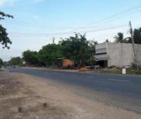 Cần Bán Đất  Đường QL55 Thắng Hải - Hàm Tân - Bình Thuận