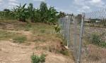 Đất ruộng đã lên nền 2444m2, gần đường tỉnh 835, Cần Đước, Long An