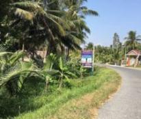 Chính chủ cần bán đất Tỉnh lộ 907, xã Trung Ngãi, huyện Vũng Liêm, tỉnh Vĩnh Long