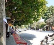 Chính chủ cần bán nhà tại sn 02 Dương Đình Nghệ -p.Tân Sơn – tp Thanh Hóa .