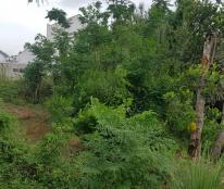 Chính chủ cần bán đất vườn dừa Thanh Tuấn.