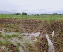 Chính chủ cần bán nhà tại Ninh Thuận