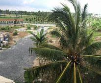 Bán hoặc cho thuê đất mặt tiền đường tỉnh lộ 866 Tân Lý Đông ,Châu Thành ,Tỉnh Tiền Giang