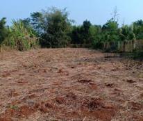 Chính chủ Bán đất vườn xã Long Phước - Thành phố Bà Rịa Liên hệ 0982280007