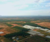 NAM Á GARDEN, có sẵn sổ đỏ,1000m2 chỉ từ 50tr, trung tâm Bắc Bình, Bình Thuận, mua bán công chứng sang tên
