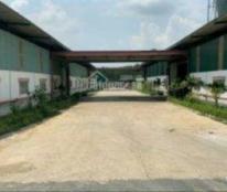 Tôi chính chủ cần bán kho, nhà xưởng ở huyện Vĩnh Cửu, xã Tân An, tỉnh Đồng Nai
