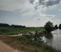 Đất lớn xã Phú Hòa Đông , Củ chi. Khu du lịch sinh thái, nghỉ dưỡng giá chỉ từ 1 triệu/ m2
