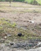 Chính chủ cần bán đất nền kề mặt tiền đường 19/5 xã Nhơn Thạnh, TP Bến Tre, tỉnh Bến Tre
