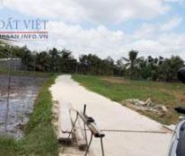 Chính chủ cần bán đất xã Phú Hưng, TP Bến Tre, tỉnh Bến Tre