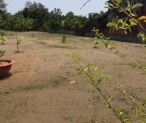 Bán 1720m2 đất vườn chính chủ, giá rẻ đường Quang Trung, Rạch Giá