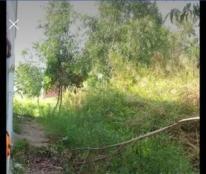 Chính Chủ Cần Bán Đất tại Hẻm 34 Tú Xương, khu phố Võ Trường Toan ,phường Vĩnh Quang ,thành phố Rạch Giá, tỉnh Kiên Giang