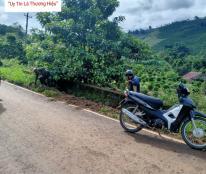 Cần Bán Đất Vườn Huyện Di Linh Tỉnh Lâm Đồng - Cách UBND Xã Tân Lâm 800m - LH: 0902669004