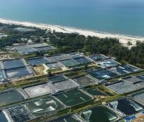Chuyển nhượng hoặc hợp tác đầu tư đất biển Quảng Bình