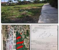 Bán 4 Lô Đất Thổ Cư Sau chợ Phước Sơn, Tuy Phước, Bình Định