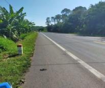 Chính chủ cần bán đất mặt tiền Quốc lộ 14 xã Đăk Gằn, huyện Đăk Mil, tỉnh Đăk Nông