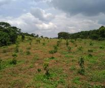 Chủ nhà kẹt tiền cần bán gấp trong tuần  5.6 xào đất vườn đẹp. view gần sông rất đẹp