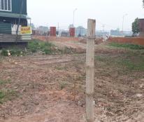 Chính chủ cần bán đất thổ cư vị trí đẹp ở Đạo Tú-Vĩnh Phúc