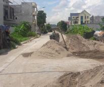 Bán Đất Viên Nha Phố Bình Chương Phường Ninh Khánh,TP Ninh Bình