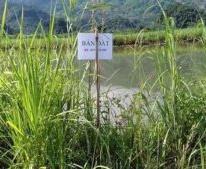 CHÍNH CHỦ CẦN BÁN TRANG TRẠI tại Bản Giang, xã Bản Giang, huyện Tam Đường, tỉnh Lai Châu.