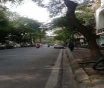 Bán 220.8m2 Đất phố Nguyễn Khánh Toàn, Lô Góc KIM CƯƠNG, 2 Mặt Tiền= 50m, Giá 42 Tỷ