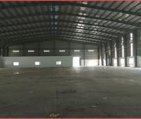 Dịch vụ cho thuê nhà xưởng KCN Tân Phú Trung 3.000m2, 5.200m2, 7.000m2, 10.000m2 Củ Chi, giá tốt