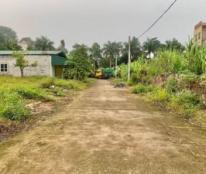 Chính chủ cần bán đất tại băng 2 xã Tiên Kiên, Huyện Lâm Thao, Phú Thọ.