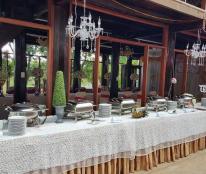 Chính chủ cần cho thuê quán cafe Khu sinh thái bảo tồn Tâm An Viên, trong buôn Cô Thôn, cuối đường trần nhật duật, phường tân lợi, tp Buôn Ma Thuột,