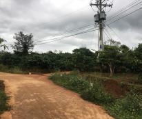 Bán gấp 8.300m2, xã Tân Nghĩa, Di Linh, Lâm Đồng.