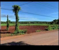 Chính chủ cần bán đất tại ấp 7 , xã Lộc Điền , huyện Lộc Ninh , tỉnh Bình Phước